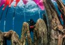 """Two Tons of """"Ghost Nets"""" Removed from Greek Seabed"""