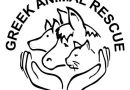 Greek Animal Rescue Supporting Kefalonia Stepping Stones and Kefalonia Animal Trust