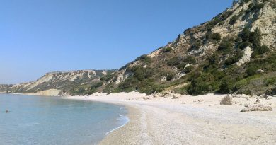 Lefka Beach access path cleared